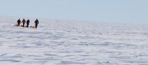 Følg Indlandsis hold 2016 LIVE her, isen